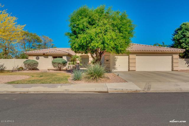 23515 N 81ST Drive, Peoria, AZ 85383 (MLS #5794436) :: The AZ Performance Realty Team