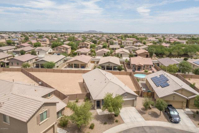 42522 W Arvada Lane, Maricopa, AZ 85138 (MLS #5794453) :: Arizona 1 Real Estate Team