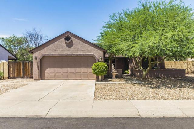 4528 W Piute Avenue, Glendale, AZ 85308 (MLS #5794509) :: The Rubio Team