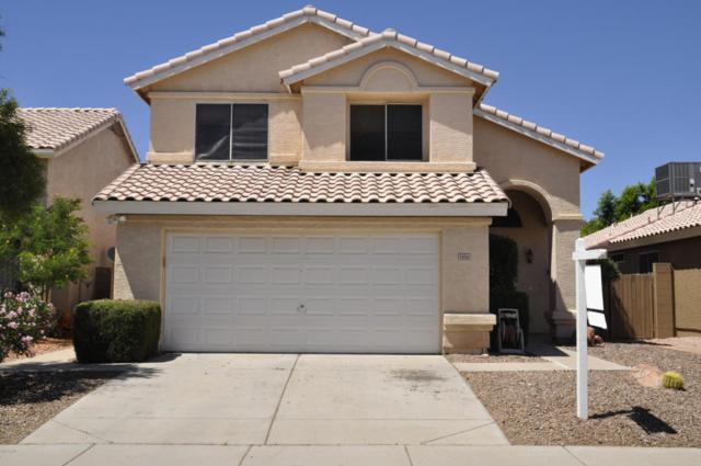5006 W Oraibi Drive, Glendale, AZ 85308 (MLS #5794517) :: The Rubio Team