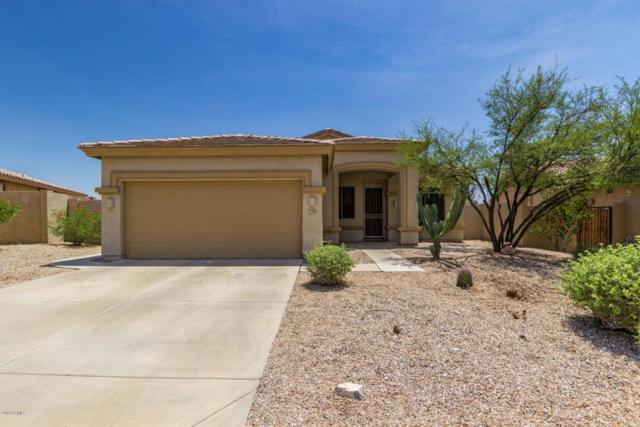 17505 W Canyon Lane, Goodyear, AZ 85338 (MLS #5794532) :: Brett Tanner Home Selling Team