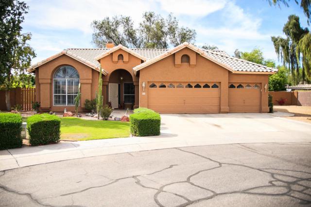 21282 N 66TH Lane, Glendale, AZ 85308 (MLS #5794542) :: The Laughton Team