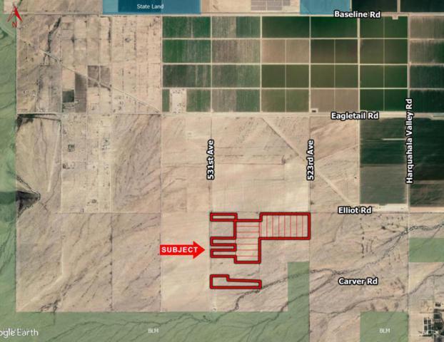 53100 W Elliot Road, Harquahala, AZ 85343 (MLS #5794546) :: Yost Realty Group at RE/MAX Casa Grande