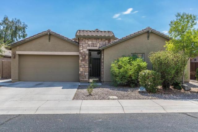 3552 S 255TH Lane, Buckeye, AZ 85326 (MLS #5794550) :: Desert Home Premier