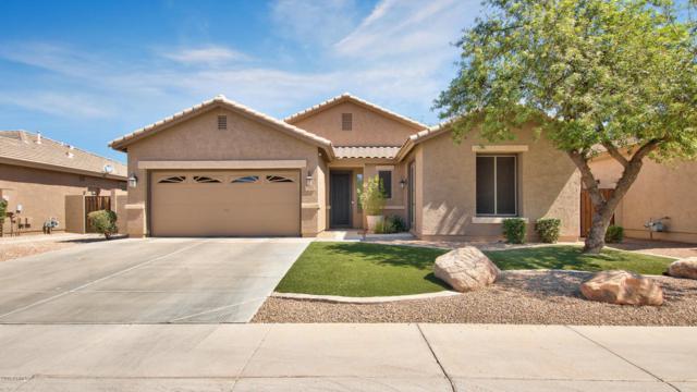 154 W Oriole Way, Chandler, AZ 85286 (MLS #5794604) :: Arizona 1 Real Estate Team