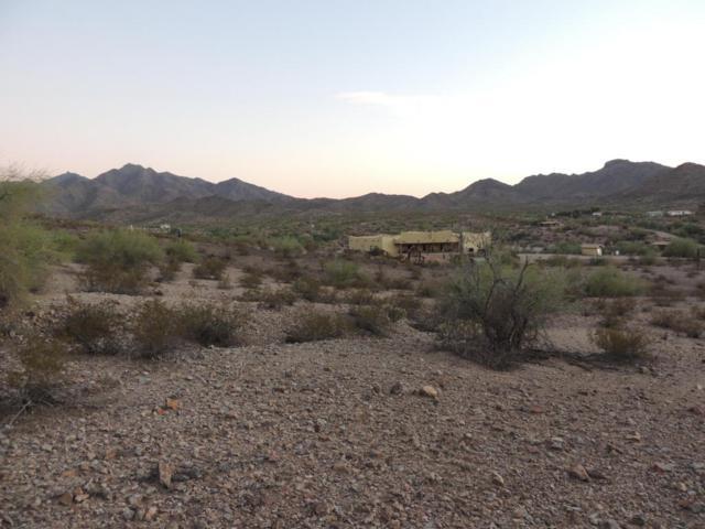 8600 S Litchfield Road, Goodyear, AZ 85338 (MLS #5794621) :: Brett Tanner Home Selling Team