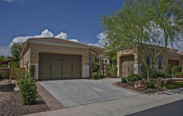 12954 W Lone Tree Trail, Peoria, AZ 85383 (MLS #5794683) :: Brett Tanner Home Selling Team