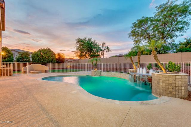 13226 W Rancho Drive, Litchfield Park, AZ 85340 (MLS #5794700) :: Group 46:10