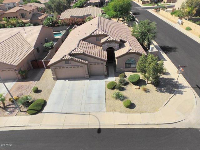 919 E Teakwood Drive, Chandler, AZ 85249 (MLS #5794714) :: Sibbach Team - Realty One Group