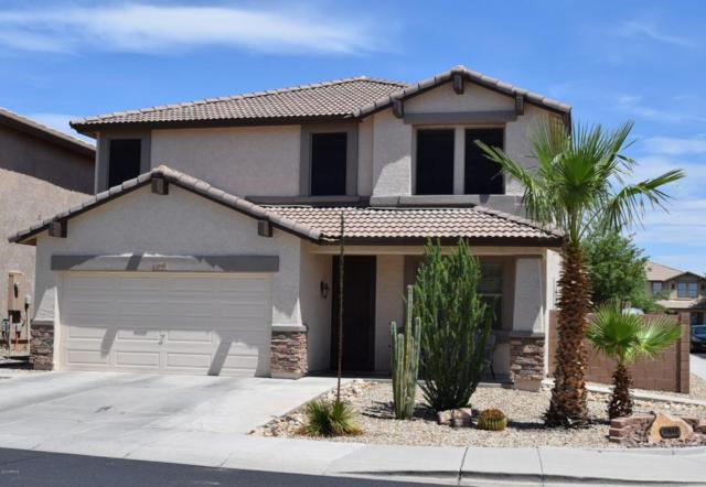 11840 W Via Montoya Court, Sun City, AZ 85373 (MLS #5794717) :: My Home Group