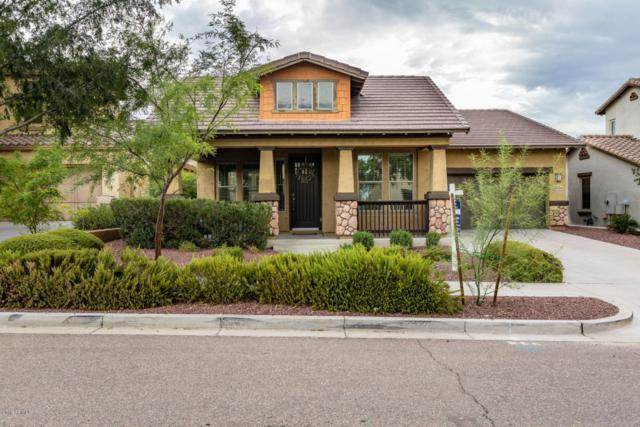 20428 W Terrace Lane, Buckeye, AZ 85396 (MLS #5794728) :: The Sweet Group
