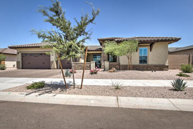 20930 E Orion Way, Queen Creek, AZ 85142 (MLS #5794749) :: Arizona 1 Real Estate Team