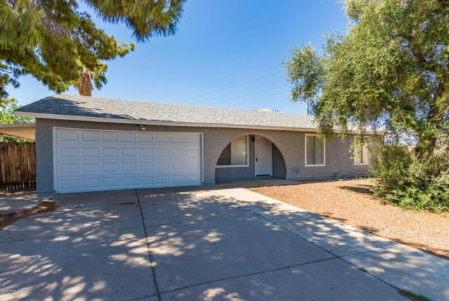1229 W Oxford Drive, Tempe, AZ 85283 (MLS #5794801) :: Sibbach Team - Realty One Group