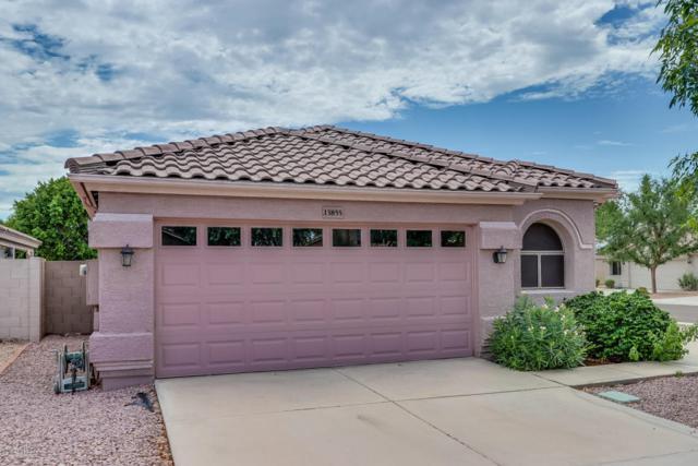 13855 N 91st Lane, Peoria, AZ 85381 (MLS #5794808) :: Brett Tanner Home Selling Team
