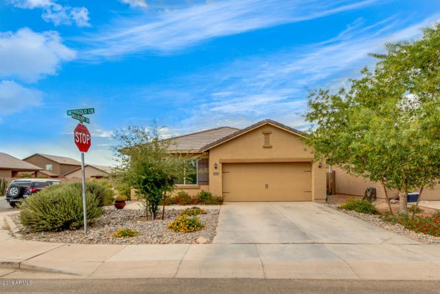 13128 E Marigold Lane, Florence, AZ 85132 (MLS #5794826) :: Lifestyle Partners Team