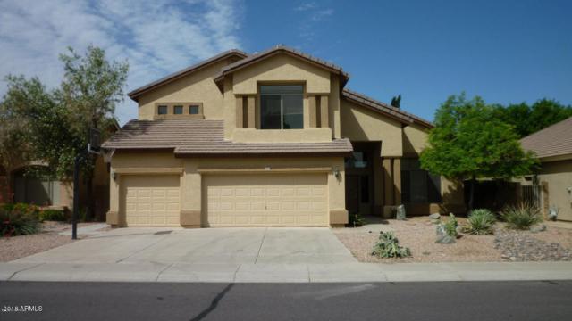 1090 S Palomino Creek Drive, Gilbert, AZ 85296 (MLS #5794858) :: Sibbach Team - Realty One Group
