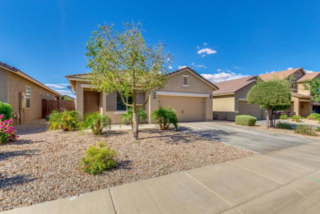 4406 W White Canyon Road, Queen Creek, AZ 85142 (MLS #5794859) :: The Jesse Herfel Real Estate Group