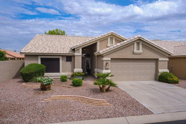 3306 N 157TH Avenue, Goodyear, AZ 85395 (MLS #5794891) :: The Sweet Group
