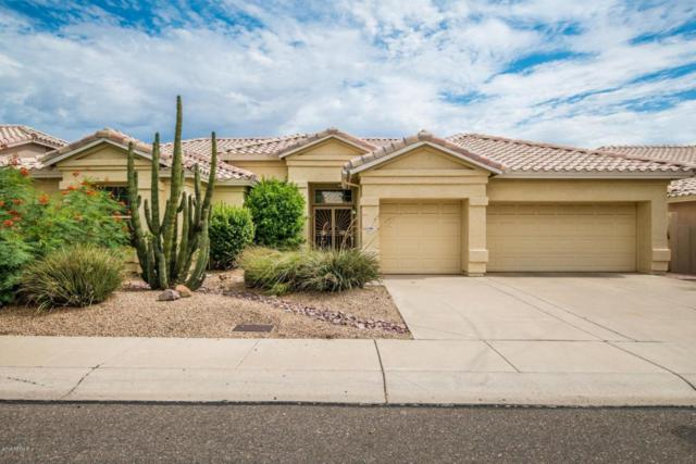 6370 W Donald Drive, Glendale, AZ 85310 (MLS #5794899) :: Sibbach Team - Realty One Group