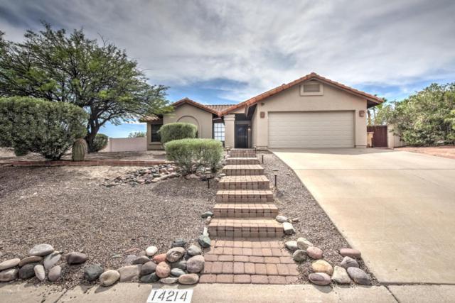 14214 N Silverado Drive, Fountain Hills, AZ 85268 (MLS #5794904) :: RE/MAX Excalibur