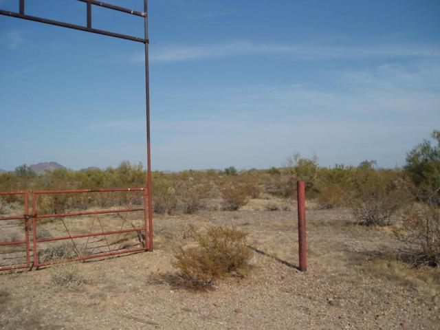 35002 W Painted Wagon Trail, Unincorporated County, AZ 85390 (MLS #5794923) :: Lifestyle Partners Team