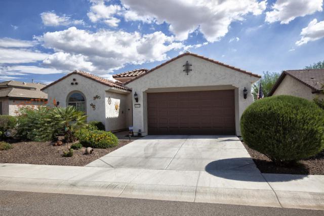 26231 W Lone Cactus Drive, Buckeye, AZ 85396 (MLS #5794926) :: The Sweet Group