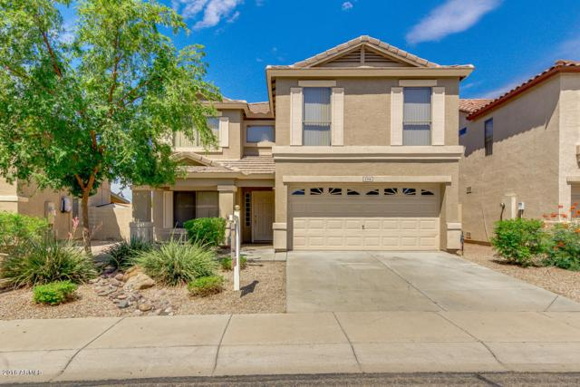 5714 N 124TH Lane, Litchfield Park, AZ 85340 (MLS #5794929) :: Power Realty Group Model Home Center