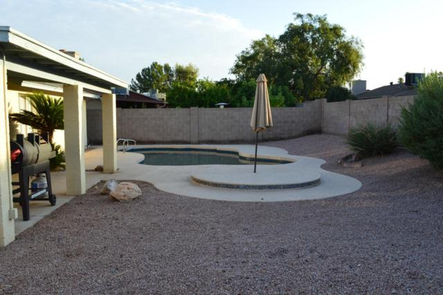 5704 W Purdue Circle, Glendale, AZ 85302 (MLS #5794943) :: Sibbach Team - Realty One Group