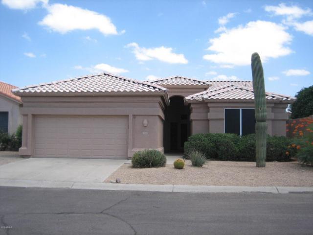 17845 N Lainie Court, Surprise, AZ 85378 (MLS #5794944) :: Phoenix Property Group