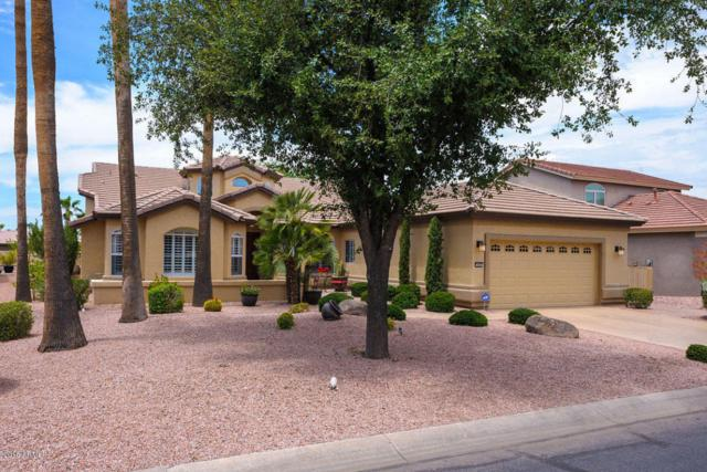 3464 N 153RD Lane, Goodyear, AZ 85395 (MLS #5794945) :: The Sweet Group