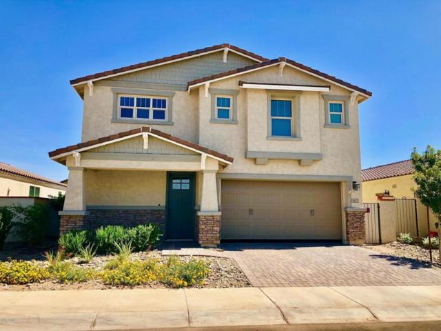 9847 E Tungsten Drive, Mesa, AZ 85212 (MLS #5794947) :: Team Wilson Real Estate