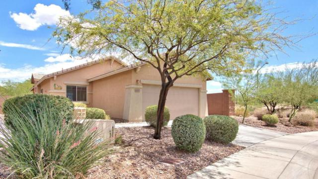 40107 N Thunder Hills Court, Anthem, AZ 85086 (MLS #5794960) :: Riddle Realty