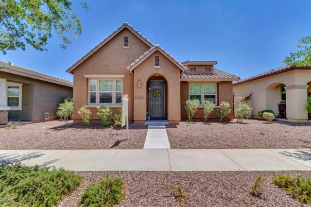 20693 W Ridge Road, Buckeye, AZ 85396 (MLS #5794972) :: The Sweet Group