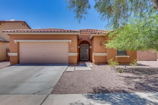3507 S 80TH Avenue, Phoenix, AZ 85043 (MLS #5794981) :: The Jesse Herfel Real Estate Group