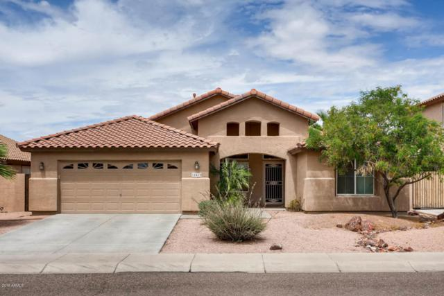 18412 N 59TH Lane, Glendale, AZ 85308 (MLS #5795003) :: Sibbach Team - Realty One Group