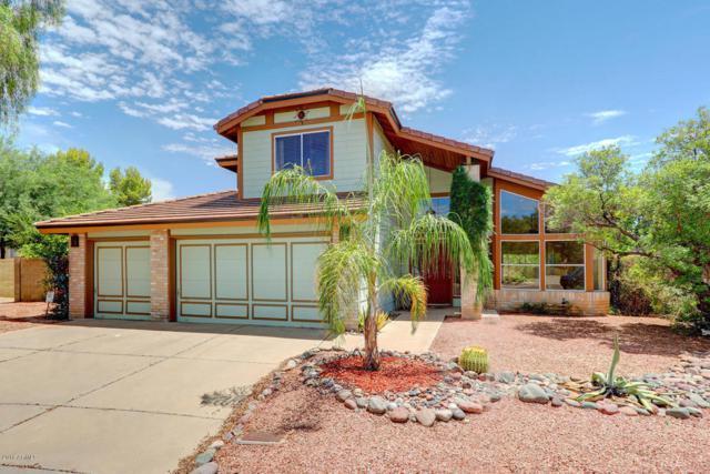 4415 E Vista Drive, Phoenix, AZ 85032 (MLS #5795031) :: Brett Tanner Home Selling Team