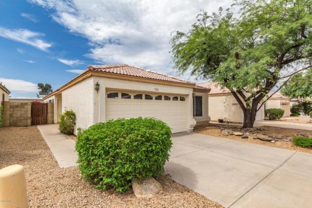 4765 E Charleston Avenue, Phoenix, AZ 85032 (MLS #5795036) :: Brett Tanner Home Selling Team