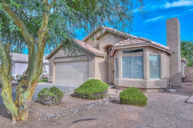 8450 W Troy Street, Peoria, AZ 85382 (MLS #5795037) :: Brett Tanner Home Selling Team