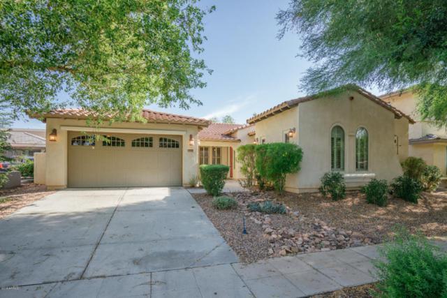 15350 W Eugene Terrace, Surprise, AZ 85379 (MLS #5795055) :: Brett Tanner Home Selling Team