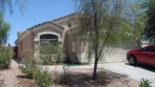 1697 S 233RD Lane, Buckeye, AZ 85326 (MLS #5795091) :: Phoenix Property Group