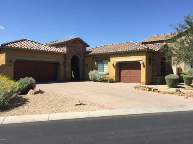 17388 N 101ST Way, Scottsdale, AZ 85255 (MLS #5795128) :: RE/MAX Excalibur