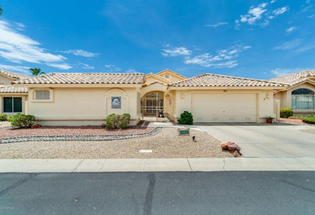 14623 W Morning Star Trail, Surprise, AZ 85374 (MLS #5795135) :: Phoenix Property Group