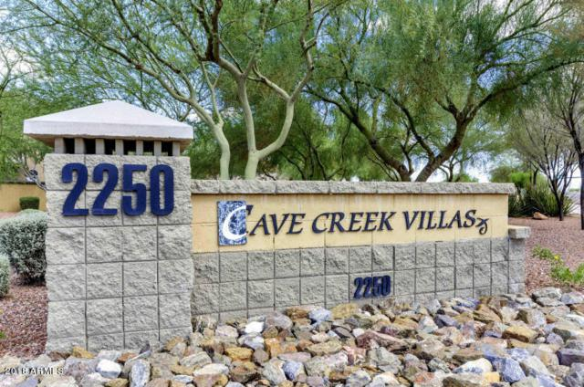 2250 E Deer Valley Road #98, Phoenix, AZ 85024 (MLS #5795142) :: The Adam Lee Team