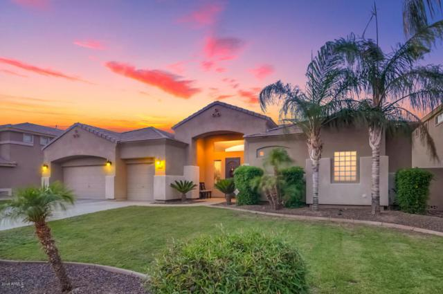 5010 W Swayback Pass, Phoenix, AZ 85083 (MLS #5795155) :: The Laughton Team