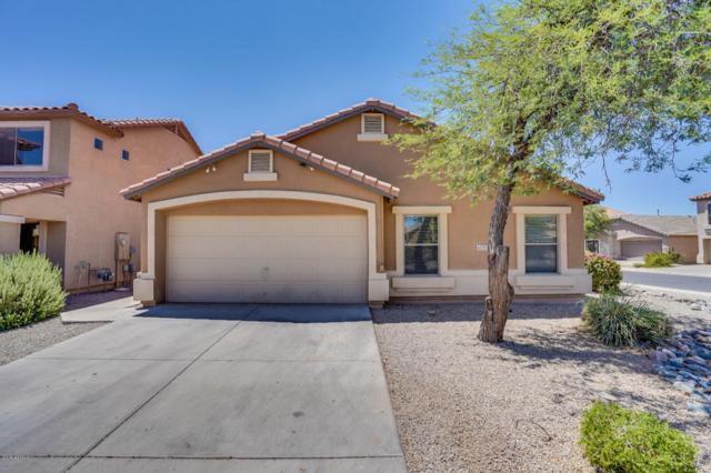 42721 W Anne Lane, Maricopa, AZ 85138 (MLS #5795163) :: Group 46:10