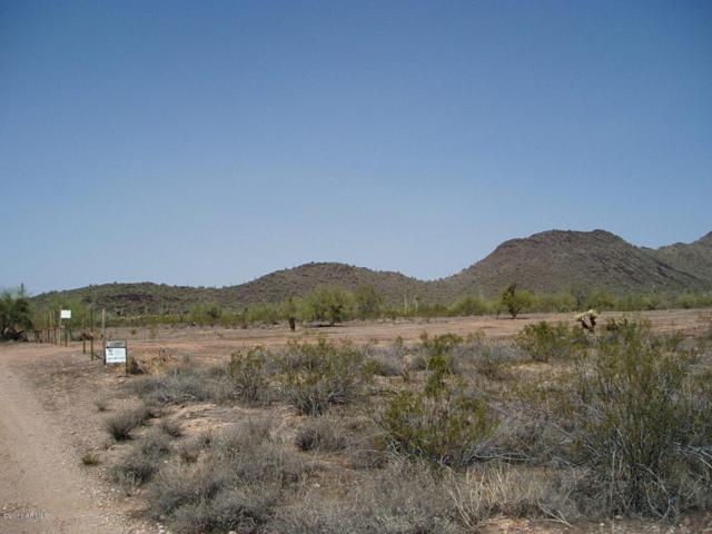 31102 W Olesen Road, Unincorporated County, AZ 85361 (MLS #5795196) :: Lifestyle Partners Team