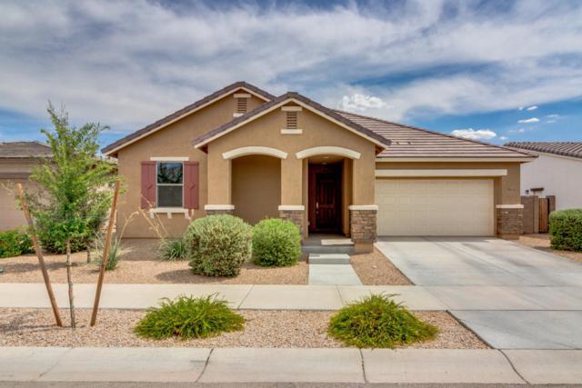 22441 E Via Del Verde, Queen Creek, AZ 85142 (MLS #5795198) :: Lux Home Group at  Keller Williams Realty Phoenix