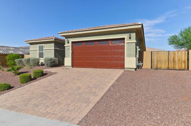 26962 N 100TH Avenue, Peoria, AZ 85383 (MLS #5795217) :: Phoenix Property Group