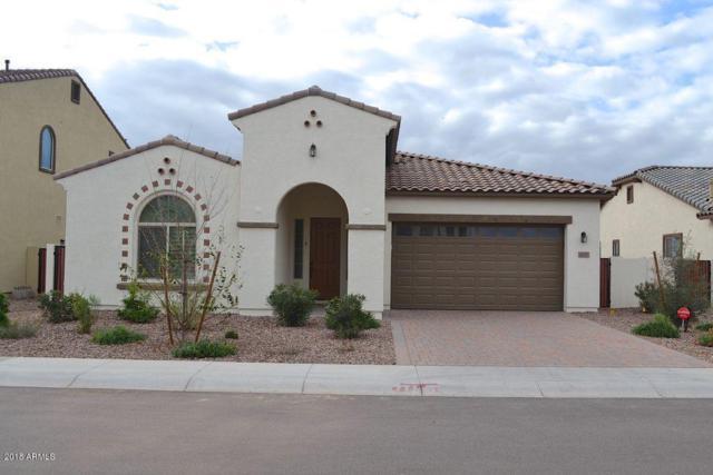 4137 E Glacier Place, Chandler, AZ 85249 (MLS #5795226) :: The Jesse Herfel Real Estate Group