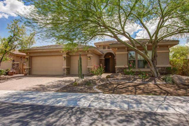 13355 W Via Caballo Blanco Drive, Peoria, AZ 85383 (MLS #5795260) :: The Worth Group